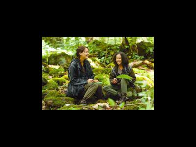 Gut erzählt: Die Tribute von Panem / The Hunger Games
